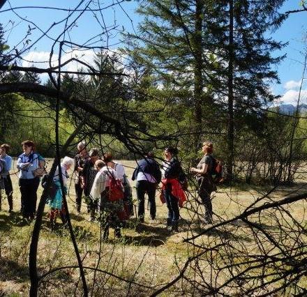 Exkursion in die Filz. Foto: Tania Zawadil
