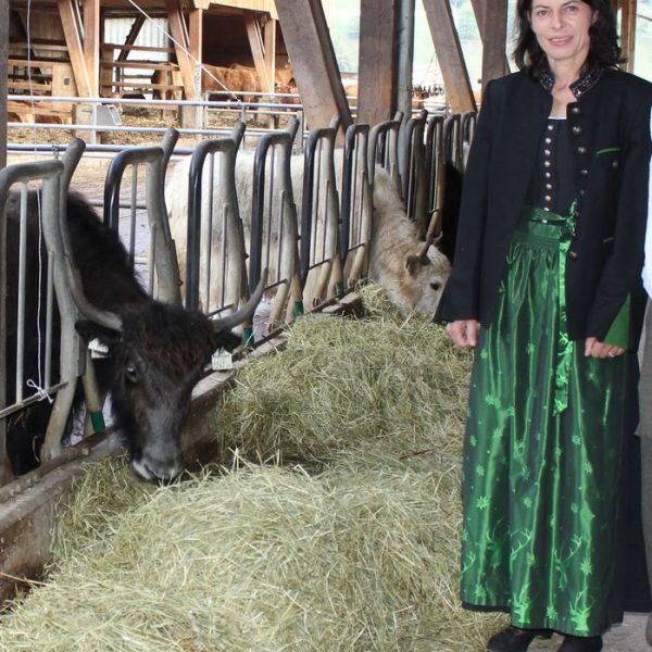 Bioyak-Bäuerin Gabi Brunner organisiert erstmals am 19.11.2016 einen Adventmarkt in Pinnersdorf.