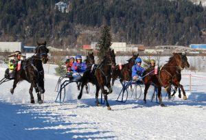 Pferderennen Wörgl 2017. Foto: Wilhelm Maier