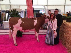 Siegerfoto mit Milchprinzessin - Jungzüchter Hubert Werlberger ist hinten links zu sehen. Foto: Familie Werlberger