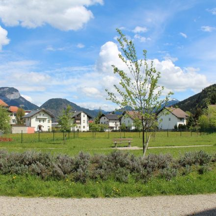 Stadtpark im Fischerfeld im Mai 2017.