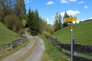 Neuer Forstweg Wörgl-Lahntal - Zauberwinkl im Mai 2017. Foto: Veronika Spielbichler