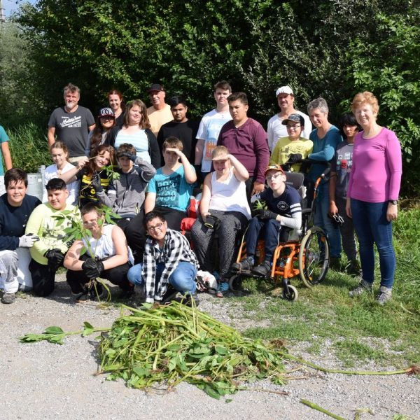 Springkrautaktion Fritz Atzl-Schule. Foto: Haberl