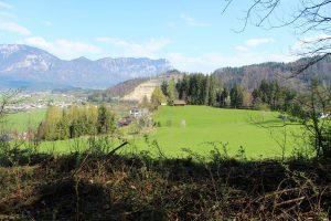 Ausblick vom Fuchsweg zur Doagl-Kapelle. Foto: Spielbichler