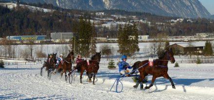 Am 28. Jänner 2018 finden auf der Rennbahn beim Schadlhof in Wörgl-Lahntal wieder die Pferderennen auf Schnee statt. Foto: ofp kommunikation gmbh