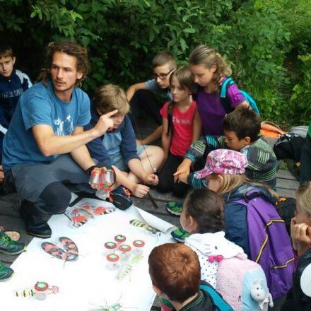 Natur kennen lernen - das beinhalten die Spiel-mit-mir-Wochen in Wörgl: Schutzgebietsbetreuer Philipp Larch in action. Foto: Komm!unity