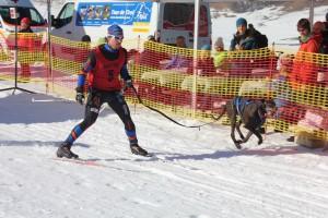 Husky-Rennen am Angerberg