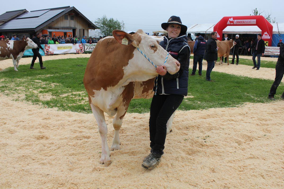 Jubiläumsausstellung 75 Jahre Viehzuchtverein Wörgl-Boden