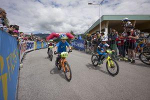 Auch die kleinen Radstars zeigten beim anspruchsvollen Parcours ihre Geschicklichkeit auf zwei Rädern. Bildnachweis: Dabernig