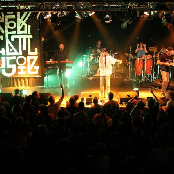 Release-Party fürs Album 4213AD der Rebel Musig Crew am 16.6.2017 im Treibhaus in Innsbruck. Foto: Veronika Spielbichler