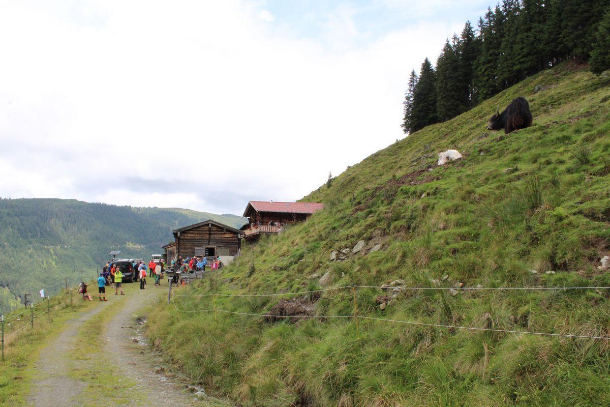 Stationen-Theater auf der Alm in der Kelchsau am 23. Juli 2017. Foto: Veronika Spielbichler