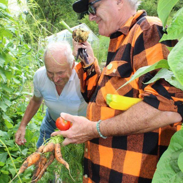 Gartenrundgang Schattleit mit Foodhunter Mark Brownstein am 28. Juli 2017. Foto: Veronika Spielbichler