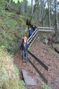 Motorisch fordernd und erlebnisreich - der Fuchsweg in Wörgl. Foto: Spielbichler
