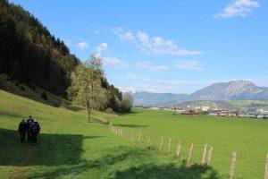 Der Fuchsweg führt entlang des Fußes der Möslalm, im Ortsteil Winkl über Wiesen bis zum Fluckingerbach, wo der Weg wieder in den Wald mündet. Foto: Spielbichler