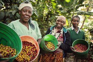 Fair Trade Kaffee-Bauern in Tanzania. © Tineke D'haese/Fairtrade