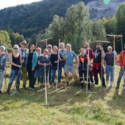 Feuchtbiotop Filz - Arbeitseinsatz Biotop-Pflege Oktober 2018. Foto: Veronika Spielbichler