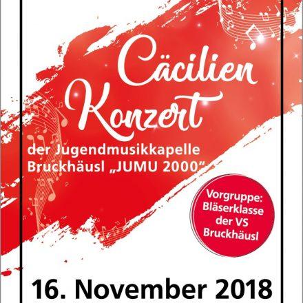 Die Jumu Bruckhäusl lädt am 16.11.2018 zum Cäcilienkonzert. Foto: BMK Bruckhäusl