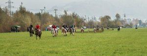 Wieder ein Highlight für Pferdesportfreunde: die 42. Unterinntaler Fuchsjagd. Foto: Wolfgang Delfs