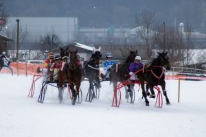 Am 27. Jänner 2019 findet in Wörgl ab 13:30 Uhr erneut das Trabrennen auf Schnee statt. Bildnachweis: Trabrennverein Wörgl