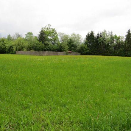 Das Grundstück, das für die Errichtung einer Hundepension umgewidmet werden soll, liegt im Wörgler Naherholungsbereich zwischen WAVE und dem Feuchtbiotop Filz. Foto: Wörgler Grüne