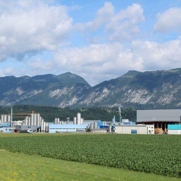 Tirol Milch Gelände Wörgl im Juli 2019. Foto: Veronika Spielbichler
