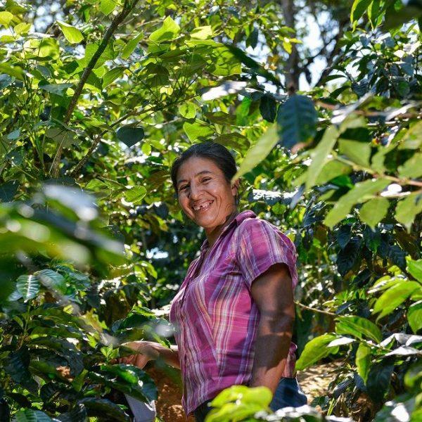 Wie Oikocredit in Menschen investiert, wird anhand von Peru gezeigt. Foto: Oikocredit