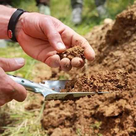 Ohne Boden wäre kein Leben möglich. Die Lebewesen im und auf dem Boden wandeln Pflanzenreste mit Wasser, Luft und Gestein zu fruchtbarer Erde um und sichern damit das ökologische Gleichgewicht. Foto: Klimabündnis Tirol