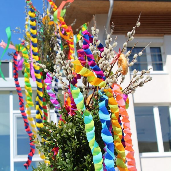 Palmbuschen. Foto: Veronika Spielbichler