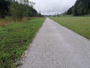 Dieser Schotterweg durchs Feuchtbiotop ist Stein des Anstoßes für die Grünen. Foto: Iris Kahn