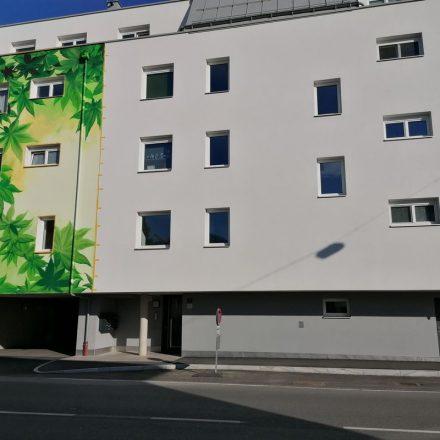 """Kein Scherz - so wird """"Fassadenbegrünung"""" in Wörgl umgesetzt. Foto: Richard Götz"""
