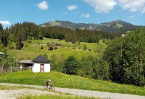 SalvenRADrunde Mai 2020. Foto: Veronika Spielbichler