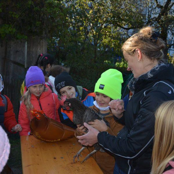 Landwirtschaft zum Anfassen mit den Wörgler Bäuerinnen am 15.10.2021 am Unterkrumbacherhof in Wörgl. Foto: Veronika Spielbichler